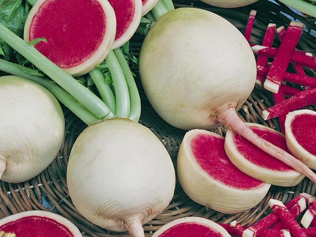 10 exotic fruits and vegetables to grow radish watermelon tomato eggplant pineberry goji berries