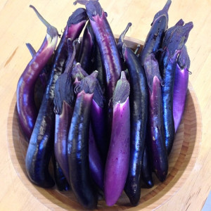 10 exotic vegetables and fruits to grow eggplant malaysian dark red pineberry garden pots growing organic