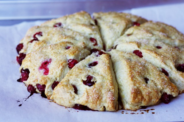 cranberry scones soft breakfast butter berries easy brunch breakfast desert butter jam coffee tea break