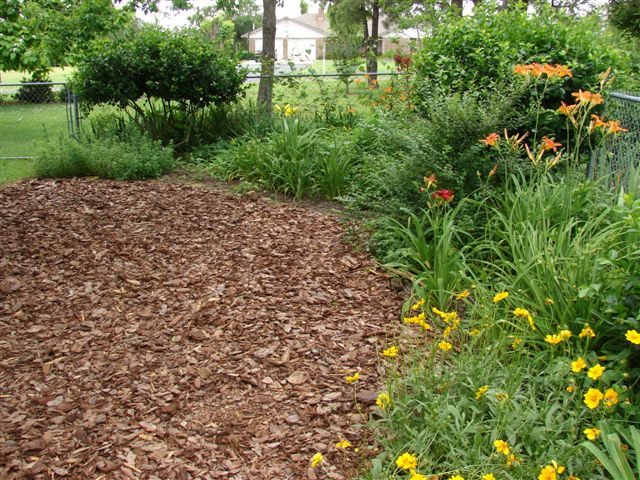 Here S How To Apply Mulch To Your Garden The Right Way