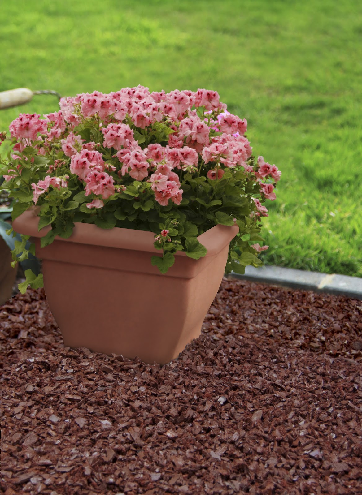 how to apply mulch garden flowers compost leaves grass clippings