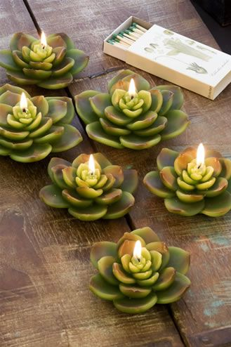 succulent candles green apple summers hottest hue decorating candles easy hot summer decor