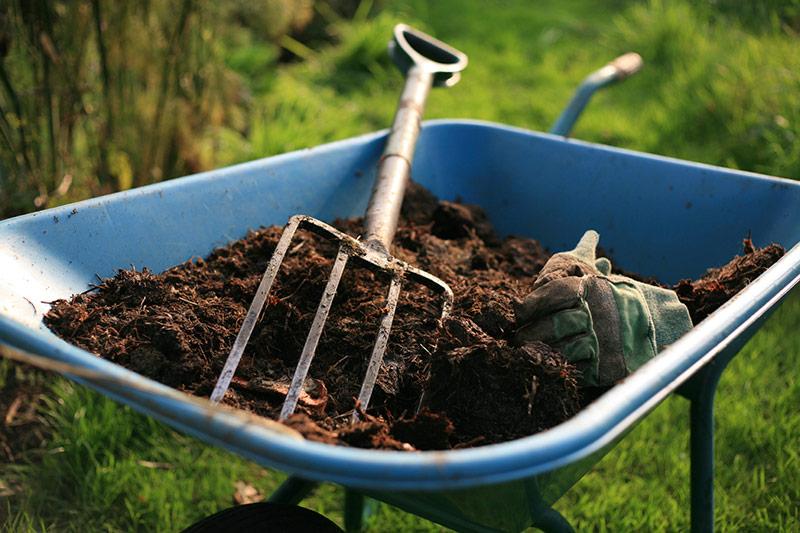How to Start Start Composting in Your Garden food scraps nutrients gardening3