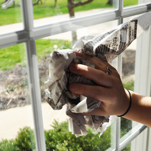 Better Housekeeper Blog All Things Cleaning Gardening