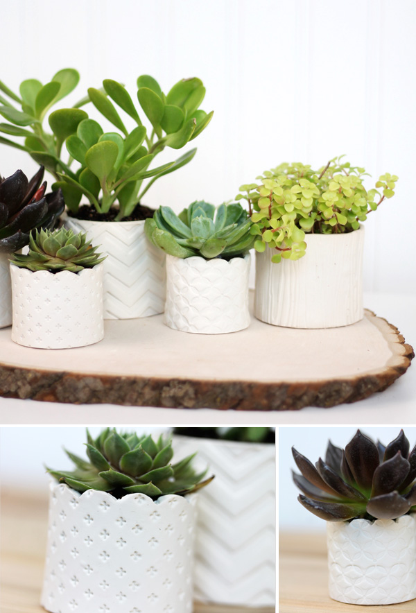 DIY Stamped Clay Succulent Pots clay gifts diy gardening decor project paint3