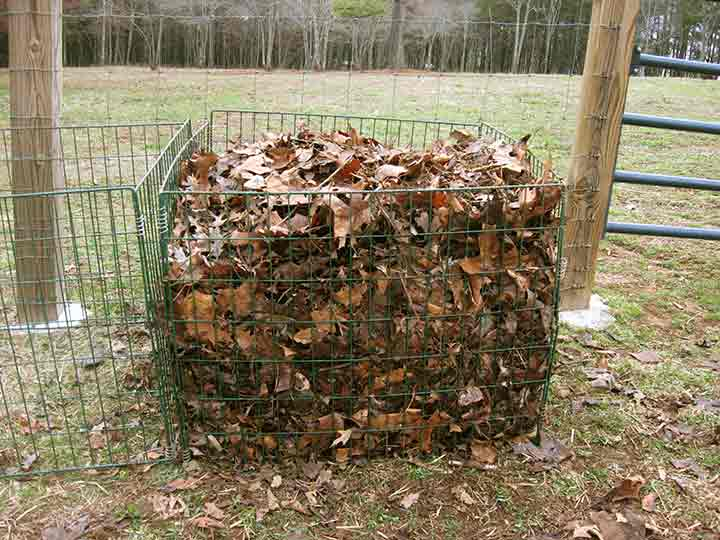 6 Useful Ways to Use Dried Up Fall Leaves kindling crafts mulch fertilizer lawn plants gardening compost5