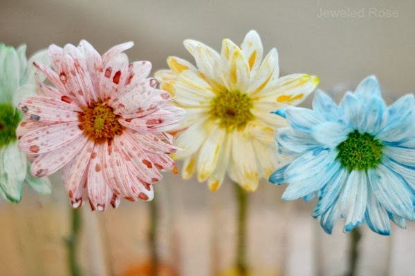 How To Make Flowers Change Color Using Food Coloring Great
