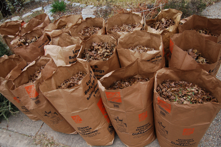 bagged-leaves-recycling-how-to-compost-leaves-for-gardening