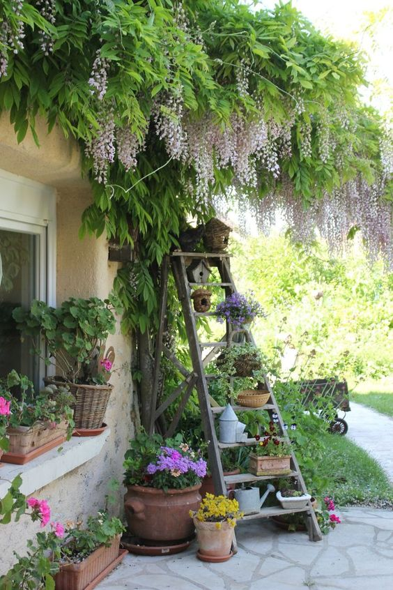 Different Ways To Make An Immediate Impact On Your Garden ...