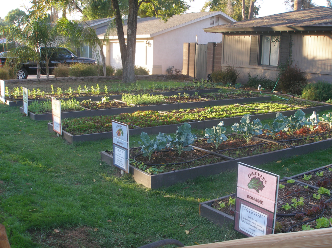 5 ways to a greener and safer neighbourhood it all for Backyard vegetable garden designs