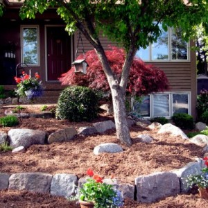 cold weather landscaping ideas