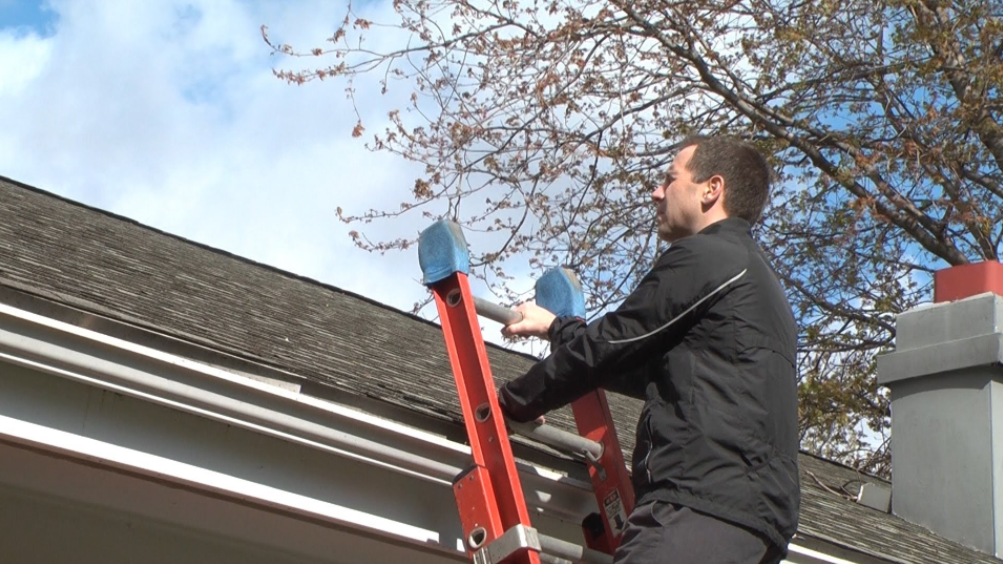 How To Maintain Your Roof And Hire The Right Professional
