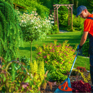 spring cleaning your home and garden the cheap way