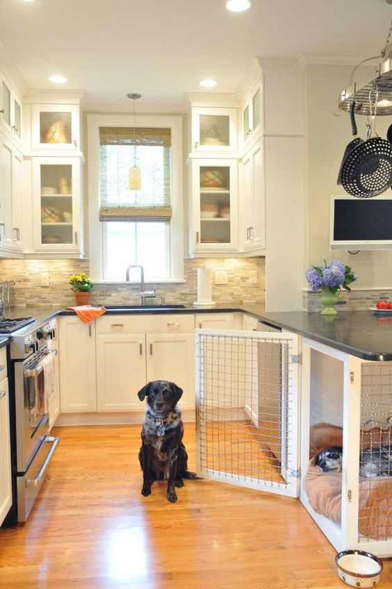 kitchen under counter dog pen
