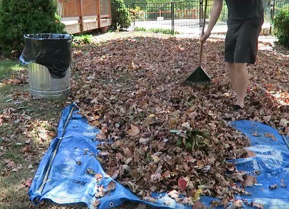using tarp around your home when gardening ideas
