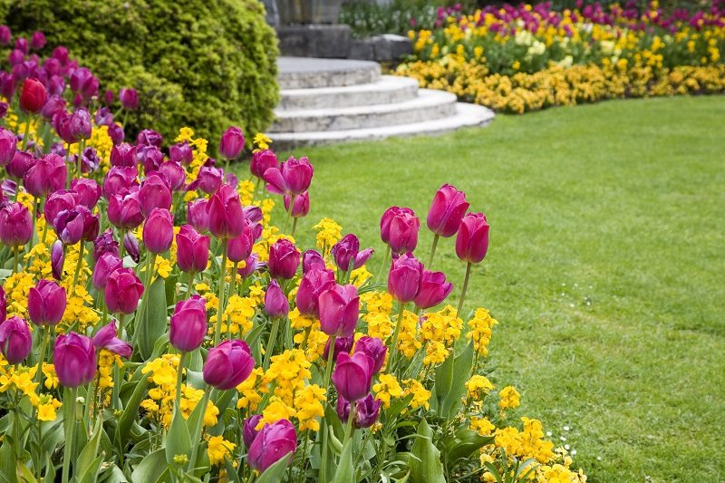 Spring Gardening Can Range From Simple To Complex Hacks That Will Yield  Excellent Results. You Are Probably Wondering Where To Start As A Beginner.