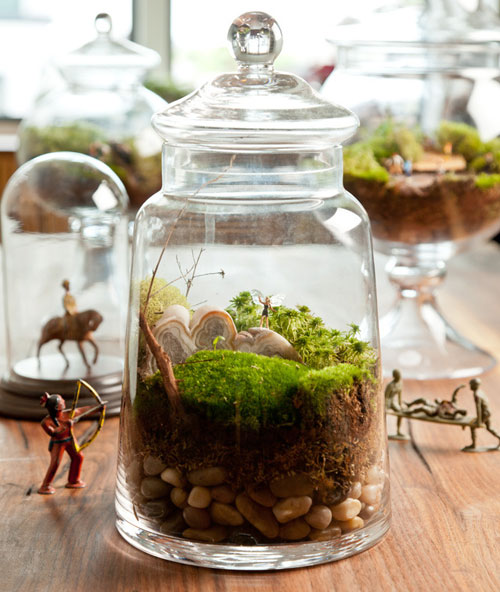 How to Make a Terrarium - Take a Look at these 10 Adorable Ideas diy moss mushrooms gnomes succulents easy diy cute indoor garden container1