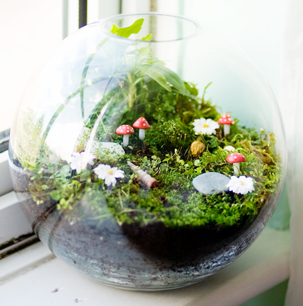 How to Make a Terrarium - Take a Look at these 10 Adorable Ideas diy moss mushrooms gnomes succulents easy diy cute indoor garden container8