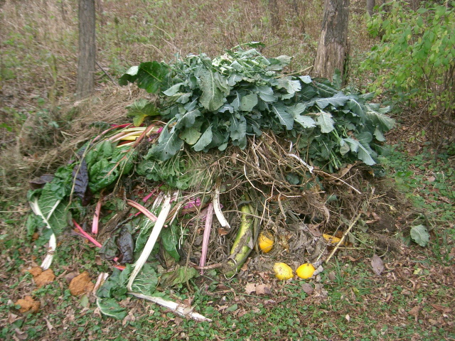 Open Compost Pile | 45 DIY Compost Bins To Make For Your Homestead