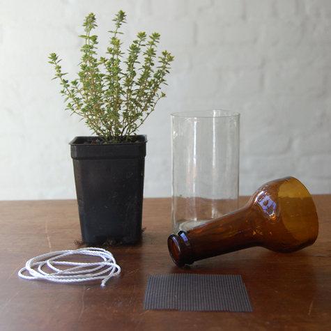 Never Forget to Water Your Plants Again- Self-Watering Planters bottle gardens beer bottles herbs easy no watering diy simple2