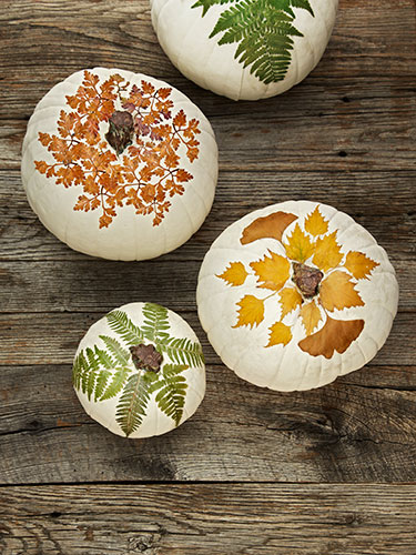 8 Ways to Decorate Your Home This Fall decor orange red neutral pumpin pillows autumn2