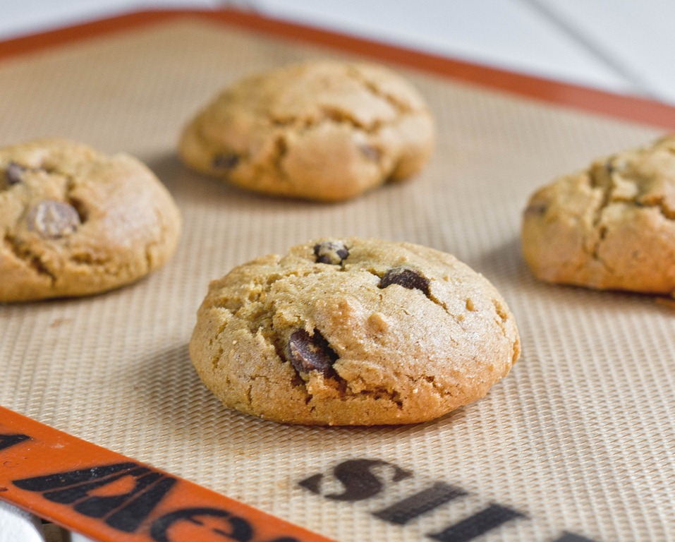 We Love Pumpkins! Make These Delicious Pumpkin Oatmeal Chocolate Chip Cookies!2