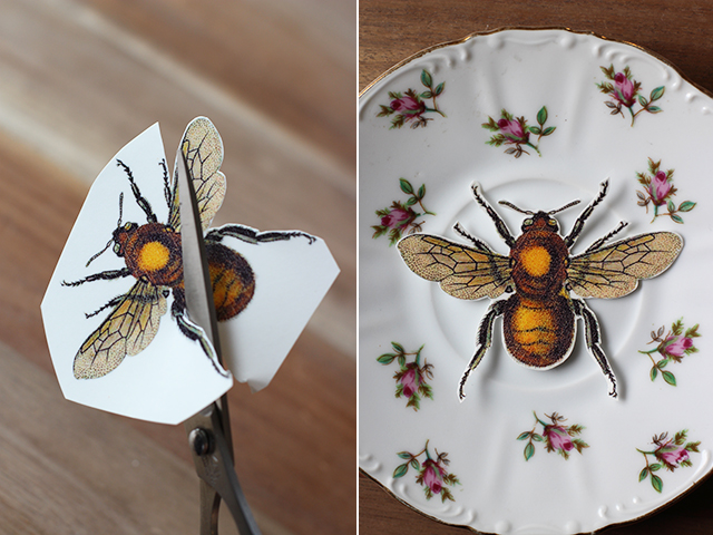 How to Jazz Up Flea Market Vintage Plates insect easy project thrift store budget cheap