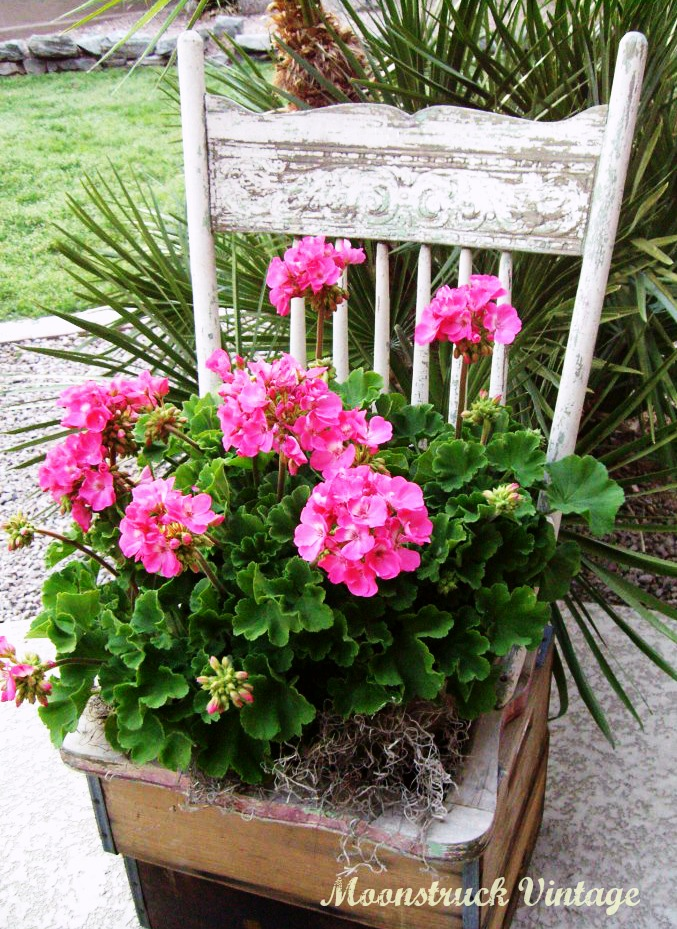 Gardening DIY: Turn a Thrift Store Chair Into a Cute Shabby Chic Inspired Planter! spring mother's day craft project gardening easy plants flowers gift present poem sugar hero cheap budget pinterest do it yourself garage sale5