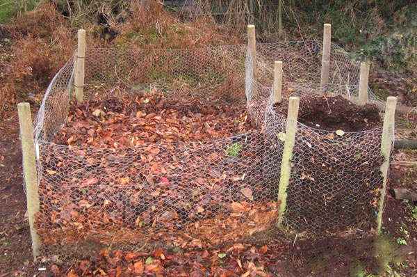 how-to-make-a-leaf-mold-for-compost-garden