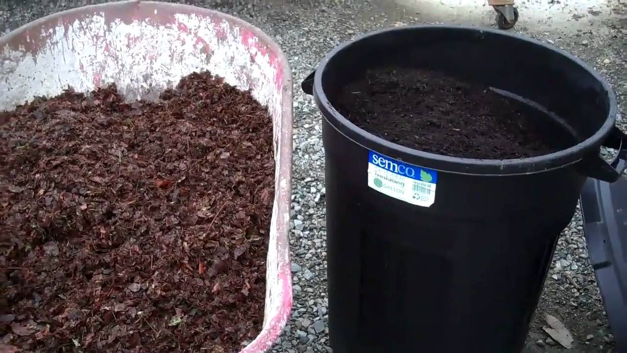 shredding-leaves-for-your-graden-compost