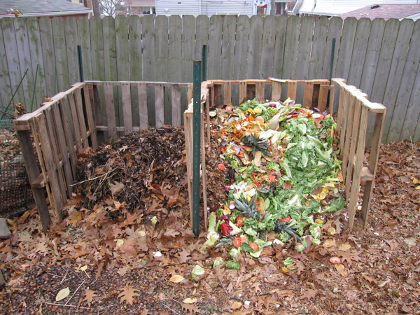 how to composte bin recycle green garbage